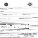 Certificado Oficial Exención displasia