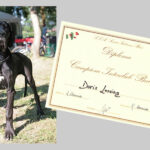 Doris Lessing Campione Interclub Puppy